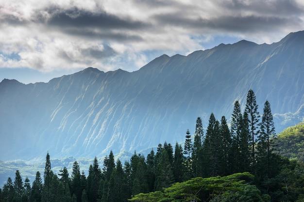 ハワイのオアフ島の山脈
