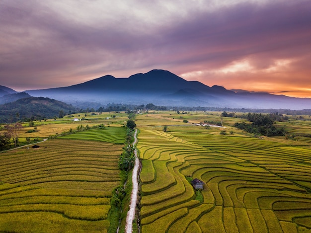 Mountain ranges and rice fields in the morning