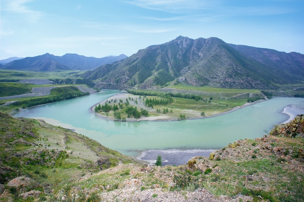 The mountain rive at altay, russia. mountain river valley panorama landscape.
