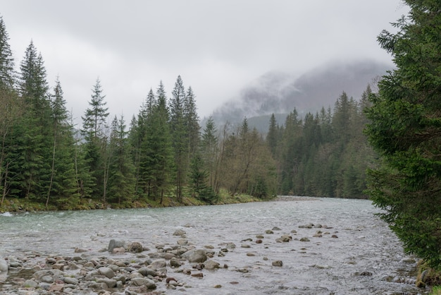Mountain river in high tatras, poland