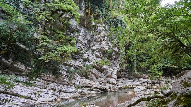 コーカサス生物圏保護区のキャニオンデビルズゲート、山川ホスタ