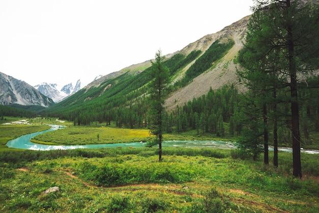 Горная река змеевидной формы в долине против заснеженных гор.