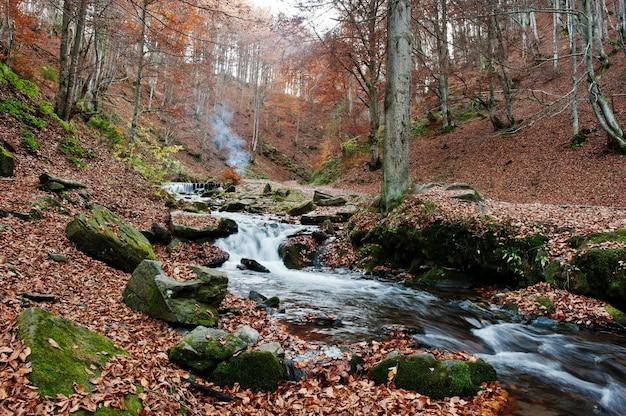 Пороги горной реки в величественном осеннем лесу с опавшими листьями и дымом огня