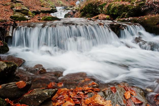 Пороги горной реки в величественном осеннем лесу с опавшими листьями