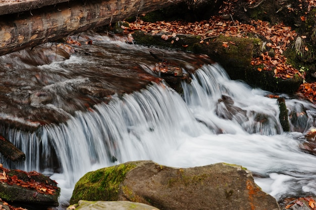 Mountain river rapids at autumn majestic forest with fallen leaves