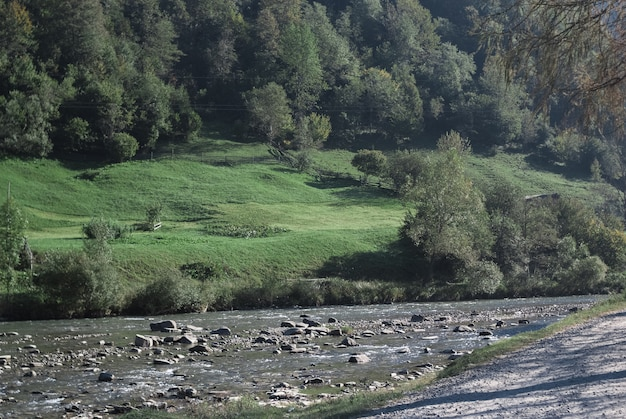 Mountain river stream valley scenery landscape in summer day