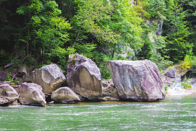 Mountain river with huge stones on shore in summer