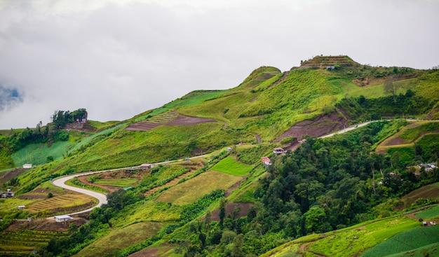 Mountain road at ( phu tubberk) in phu hin rong kla national park