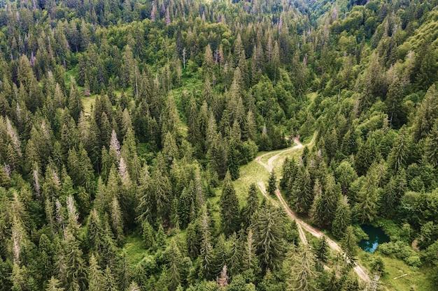 Горная дорога через зеленый сосновый бор. красивый природный ландшафт