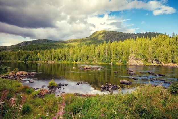 Горная каменистая река. прекрасная природа норвегии