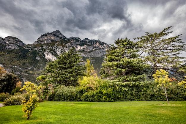 山の風光明媚な高山のパノラマ風景、青い曇り空