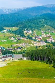 Горнолыжный склон в летний день. пейзаж зеленых гор на фоне.