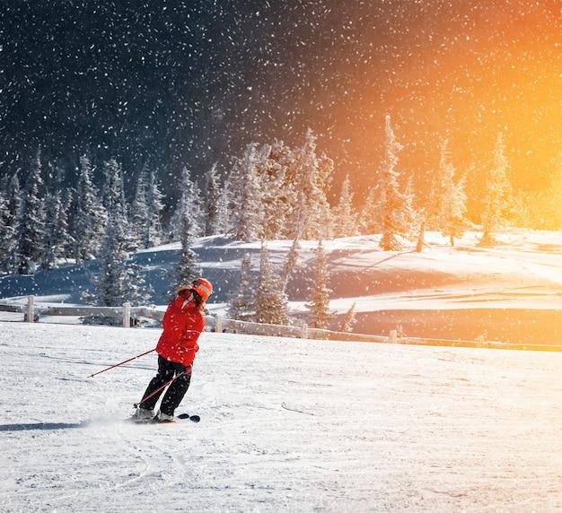 산악 스키 리조트 여행 휴가