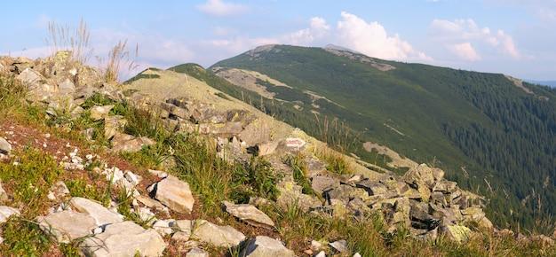 Горная каменистая панорама (горганский район карпатских гор, украина). составное изображение из пяти кадров.