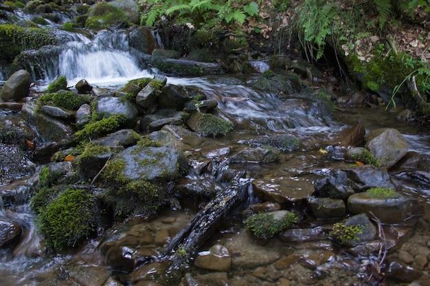 石の間の渓流。水しぶき。ストーンズ。