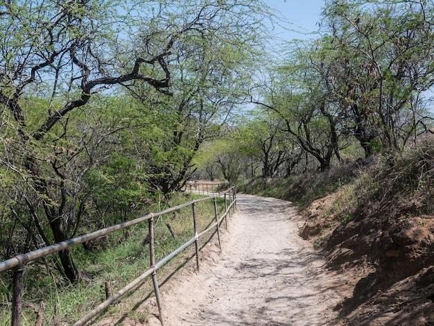 Горная тропа для пеших прогулок
