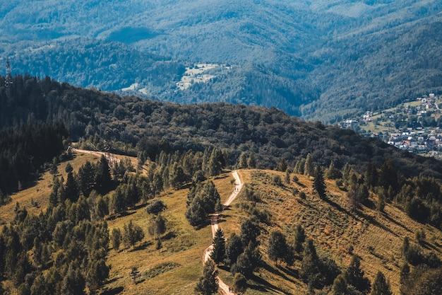 登山道、緑の牧草地と遠くの山々、ドロミテアルプス、イタリア Premium写真
