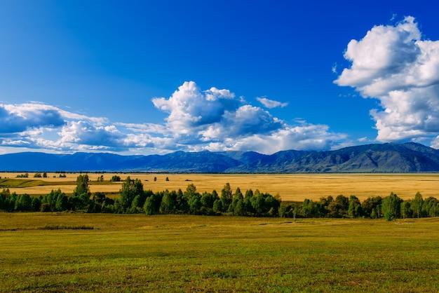 Горная долина, золотая осень, панорама пейзаж, сибирь, республика алтай, россия