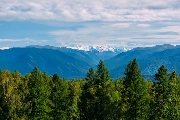 マウンテンバレー、黄金の秋のパノラマ風景、晴れた天気、アルタイ共和国、ロシアのベルハのビュー