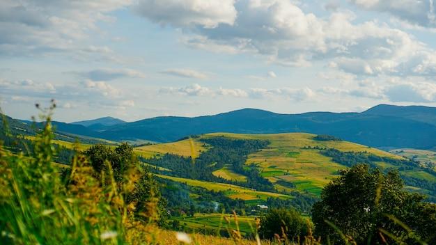 Горная долина. естественный летний пейзаж. горизонтальный баннер фон