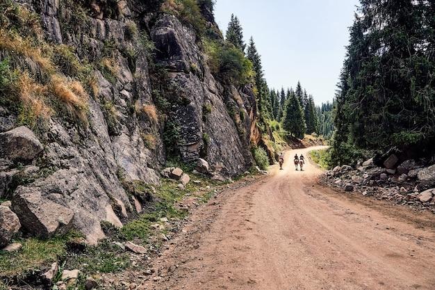 夏の山の谷のパノラマ。