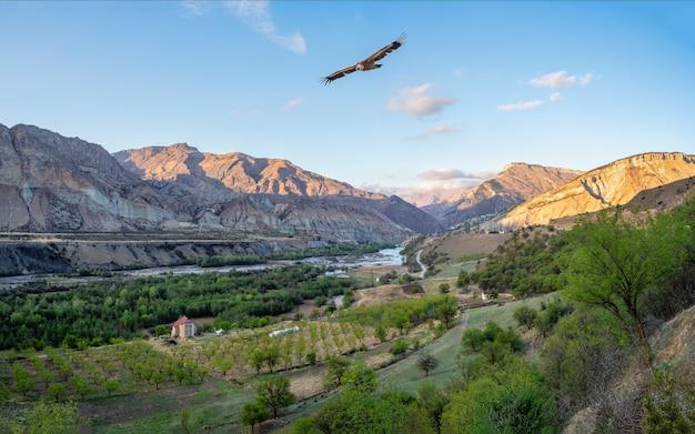 川のある山の谷。ダゲスタンのアバールコイス川の夕景のパノラマ。ロシア。