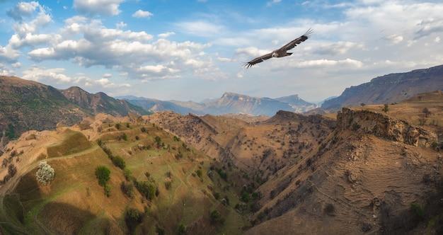 鷲がそびえる山の谷。まばらな植生に覆われた山々を背景に遠くまで伸びる岩だらけの棚。ダゲスタン。全景。
