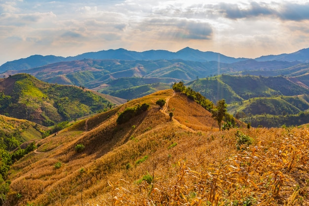 Mountain  views in the area of nan province, thailand