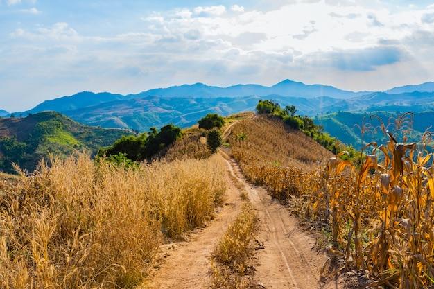 タイ、ナン県周辺の山の景色