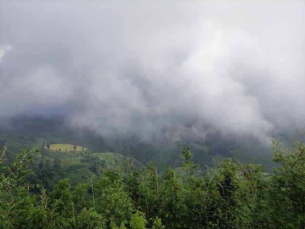 霧の性質を持つ山