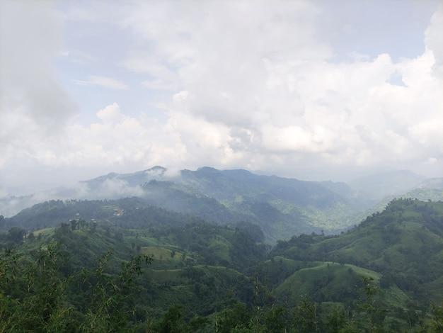 緑の木々と雲のある山