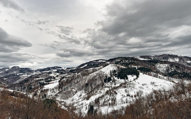 冬のセルビアの山zlatibor。