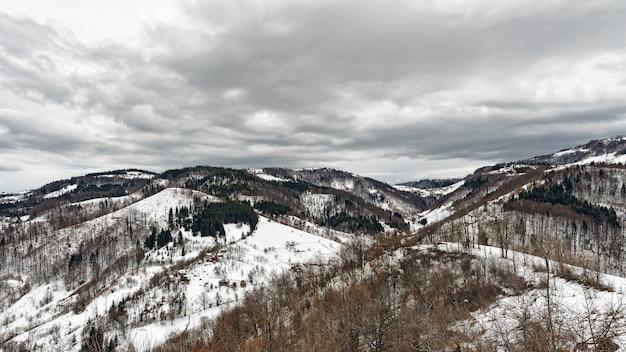 겨울에 산 zlatibor, 세르비아.