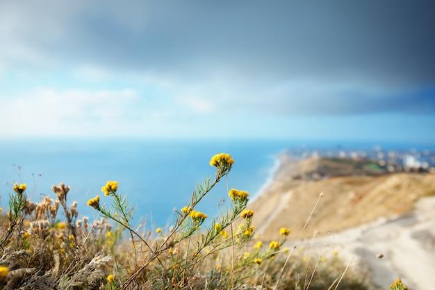 Горы и морской пейзаж с голубым небом. черное море, россия. прекрасный вид на город.