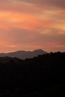 Горы и лес с красивым солнцем