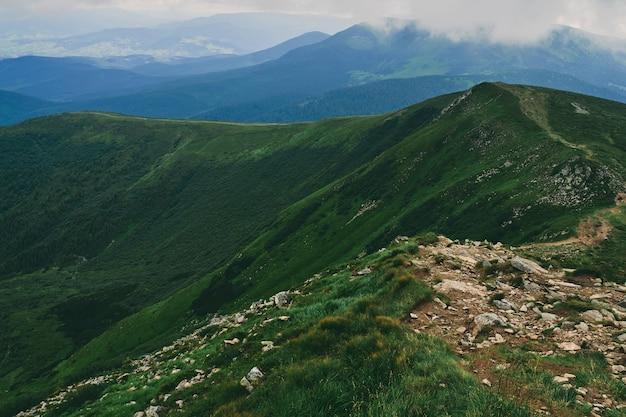 Горы и равнины с зеленой сочной травой и камнями. горный лес в тумане облаков. горный лесной пейзаж.