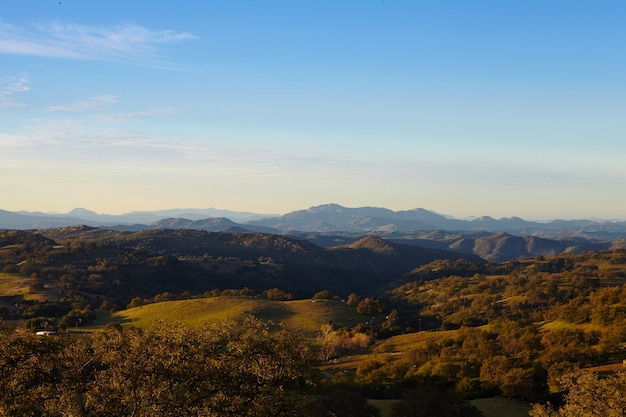 아침 햇살에 메사 그란데의 산과 나무, 샌디에이고