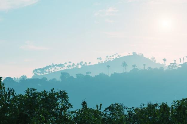 Горы и силуэты деревьев на закате, цейлон