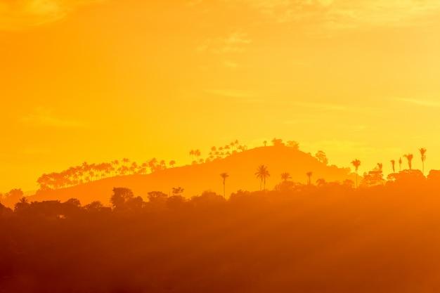 日没で、セイロンの山と木のシルエット