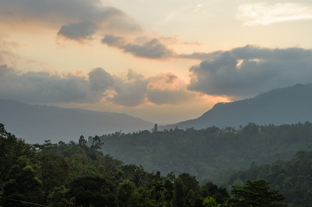 Mountains in central part of sri lanka near nuwara eliya