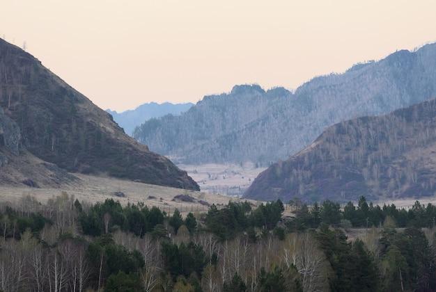 Горы, покрытые лесными пейзажами, уходят к горизонту березы и сосны
