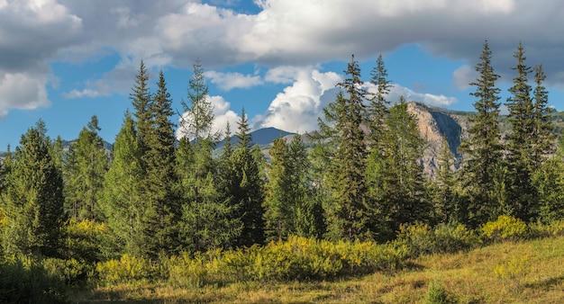 青い空に山の森と雲