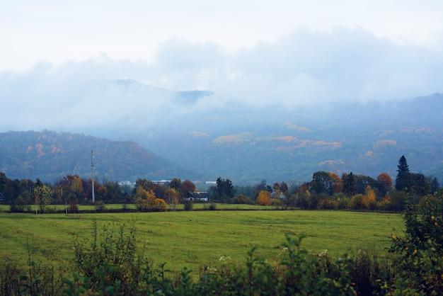 山緑草山霧旅行自然
