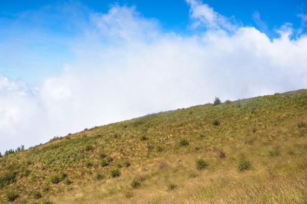 산에는 건조한 초원, 안개 낀 아침, 파란 하늘이 있습니다. kew mae pan 자연 트레일 - doi inthanon 국립 공원, 치앙마이, 태국.