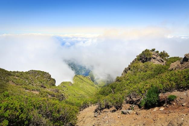 雲の風景の中の山々