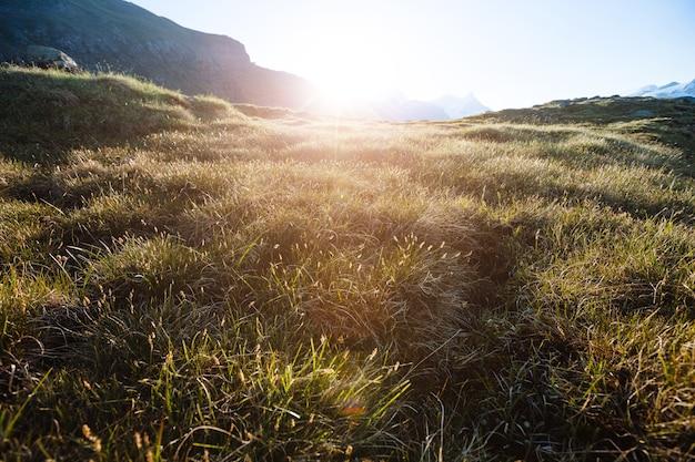 日没時のスイスアルプスの山々