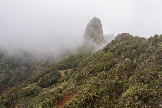 안개에 산입니다. 신비한 안개가 산에 접근하고 있습니다