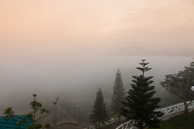 아침 안개에 산입니다.