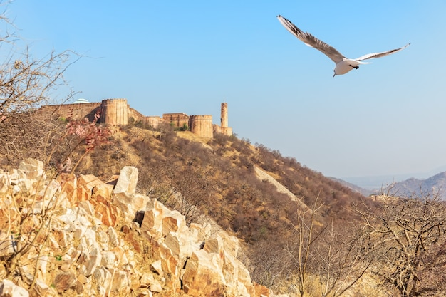 Mountains in jaipur and jaigarh fort, india.