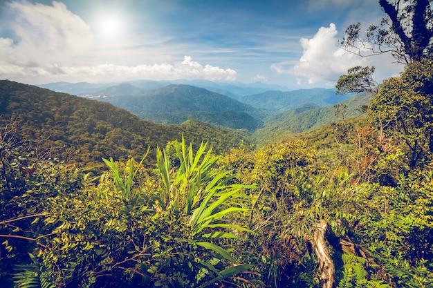 Mountains landscape in cameron highlands
